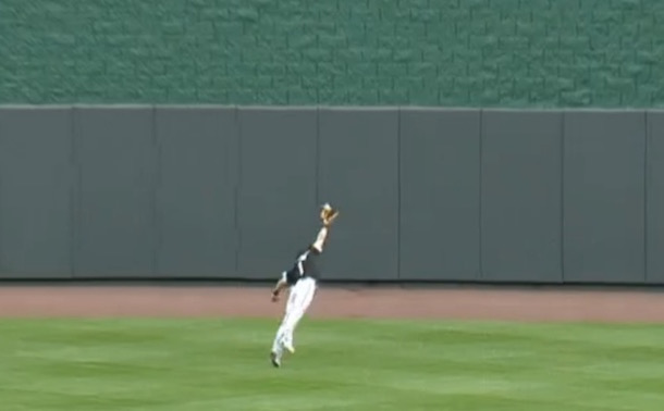 adam-eaton-diving-catch